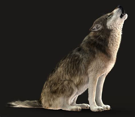 How to make a 3D wolf howl at the moon in Maya | The Maya